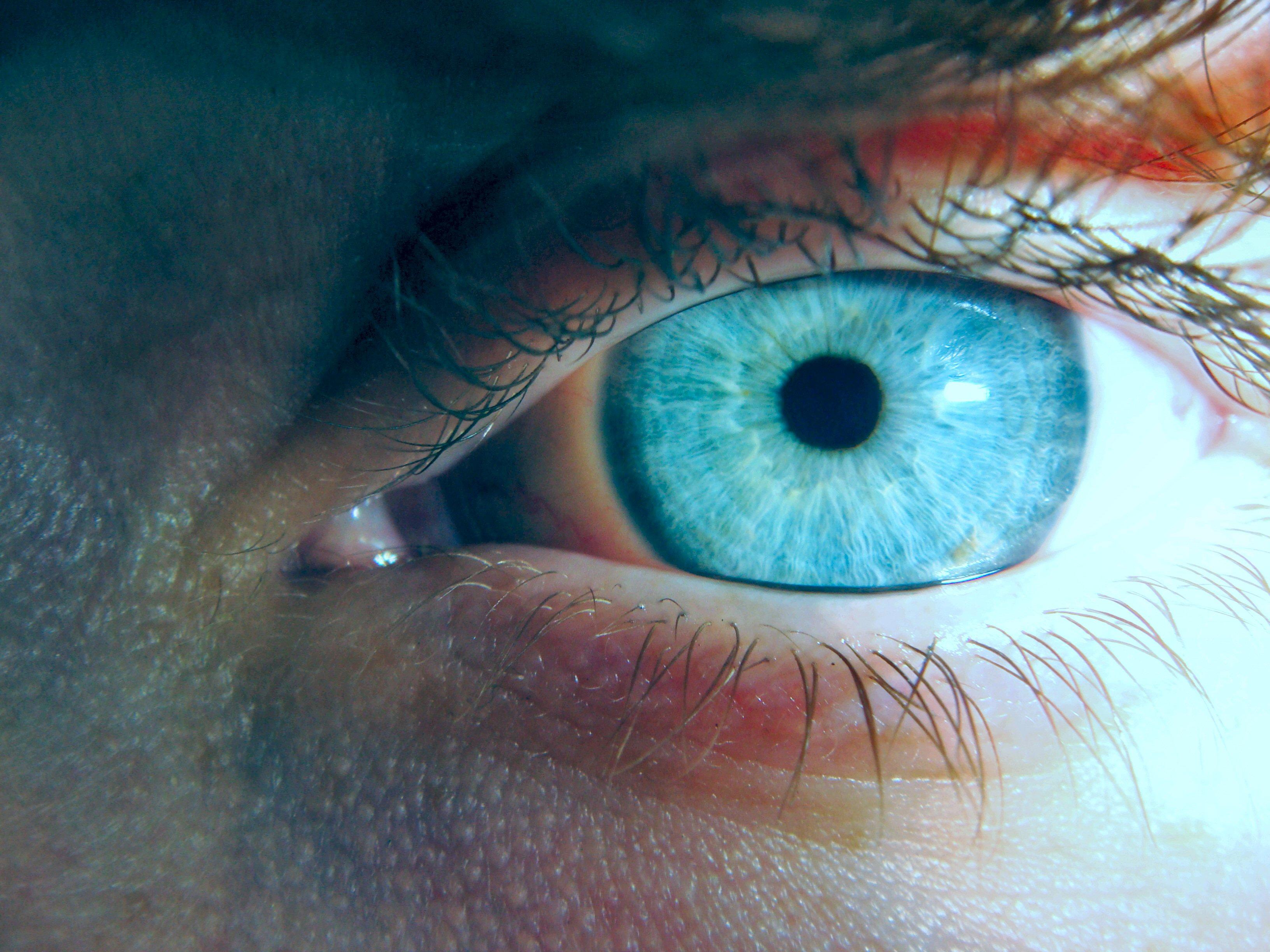 Все что связано с голубыми глазами - Самые интересные факты о человеке