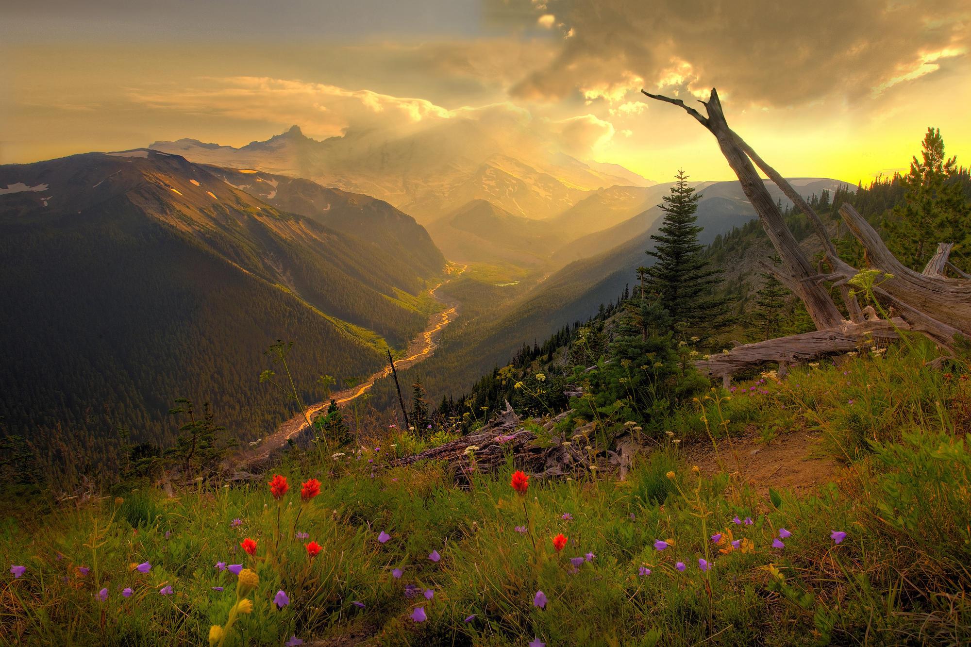 http://cdn.oboi7.com/6ebcc1a736daa0d4baf183ad3baf42055a2ec879/gory-oblaka-pejzazhi-priroda-cvety-doliny-polevye-cvety.jpg