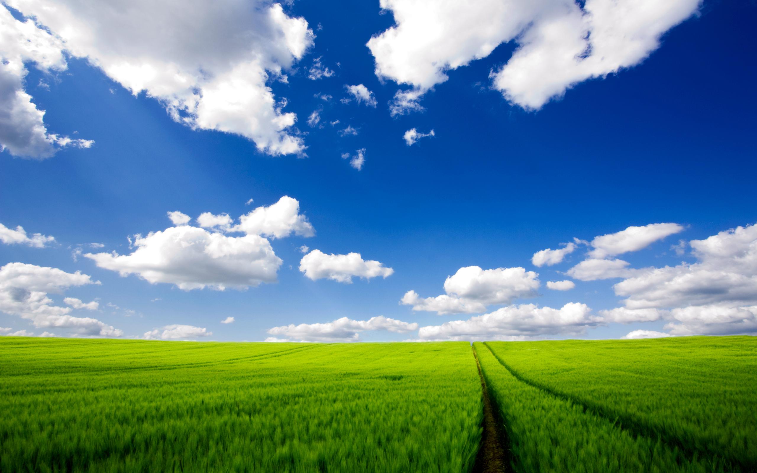 http://cdn.oboi7.com/8d74c29b8b5a0b2729d042384d8ae388c159b990/oblaka-pejzazhi-priroda-polya-luga-nebo.jpg