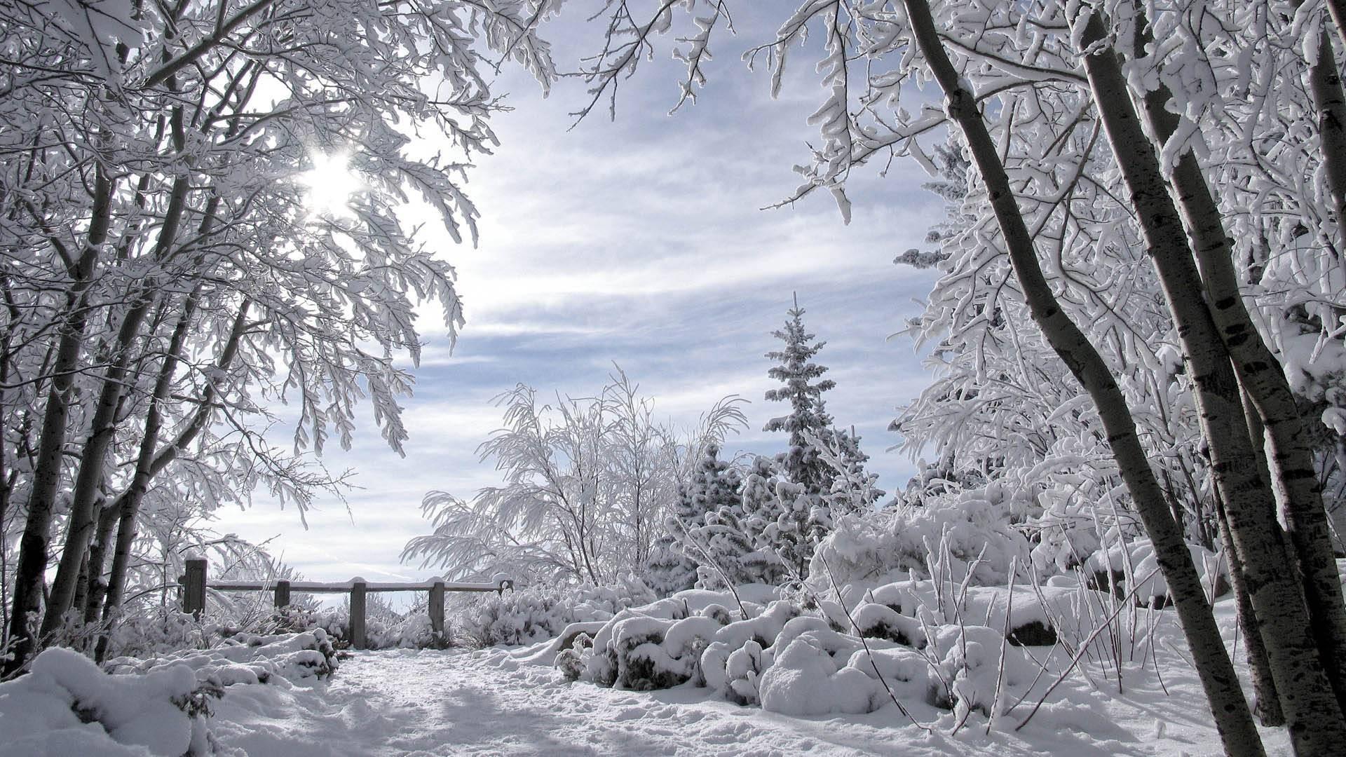 http://cdn.oboi7.com/d2aae9d7a8744625905b8d297612d6c36da286d3/pejzazhi-priroda-zima-sneg-derevya-gorizonty-zabory.jpg