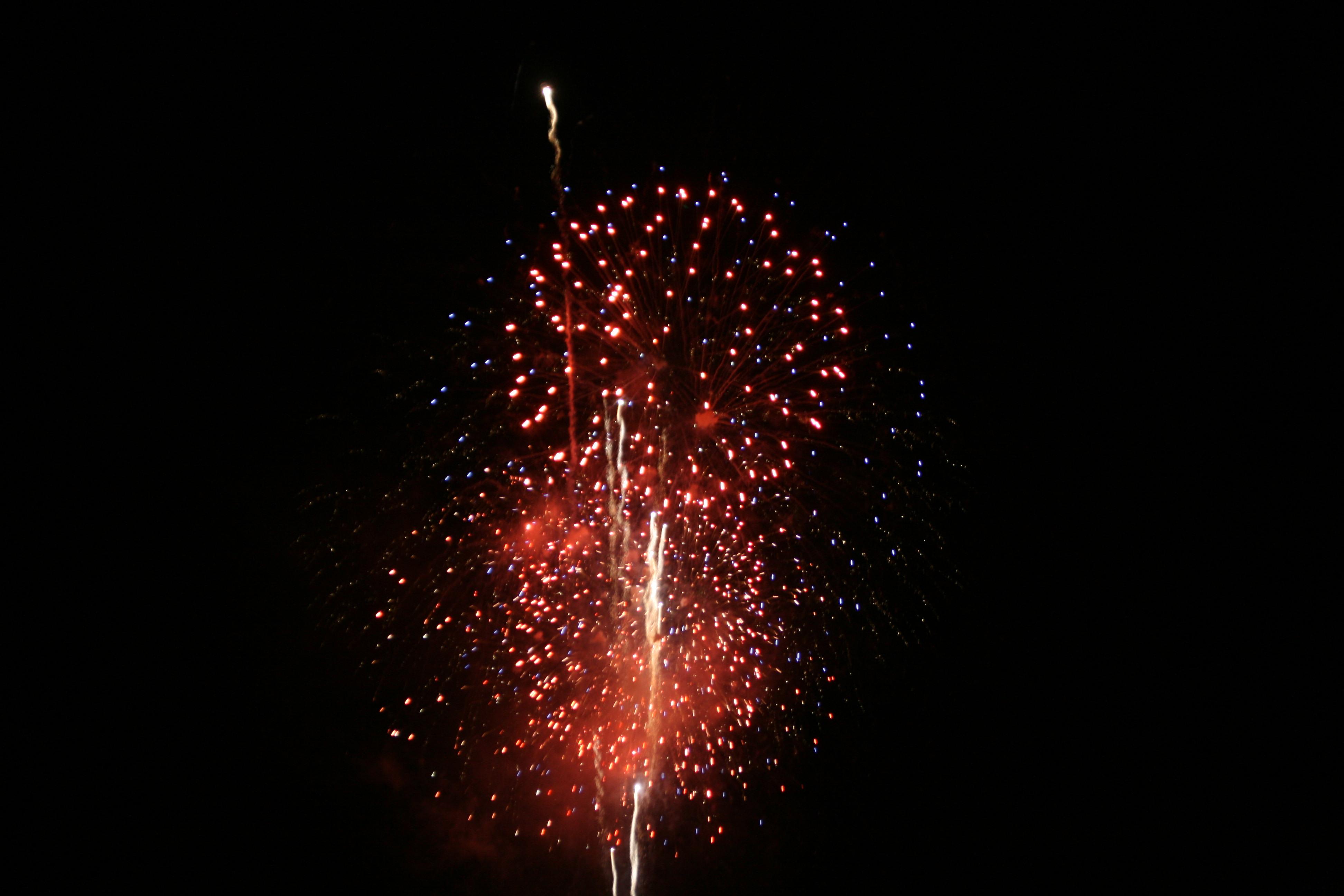 Fireworks Free Vector Art  12053 Free Downloads  Vecteezy