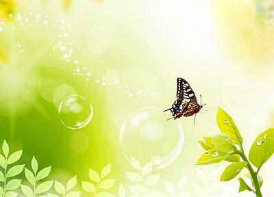 растения, пузыри, цифровое искусство, бабочки - обои на рабочий стол