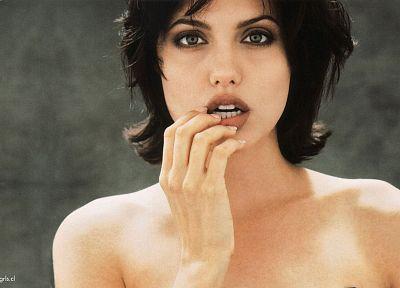 девушки, актрисы, Анджелина Джоли - популярные обои на рабочий стол