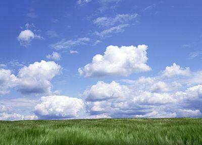 облака, луга, небо - новые обои для рабочего стола