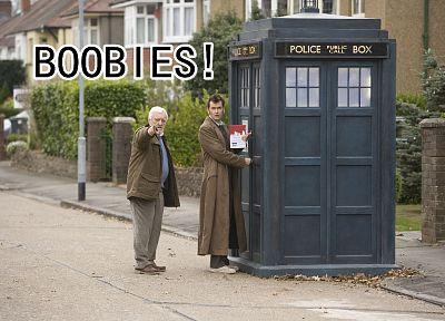 ТАРДИС, Дэвид Теннант, смешное, Доктор Кто, Десятый Доктор - популярные обои на рабочий стол