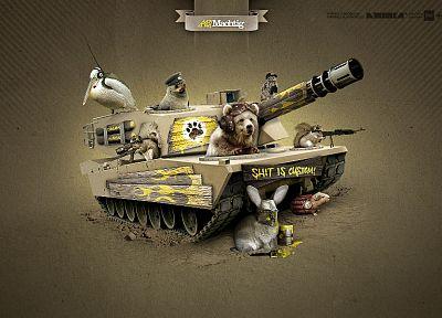 кролики, смешное, оружие, танки, белки, медведи - популярные обои на рабочий стол