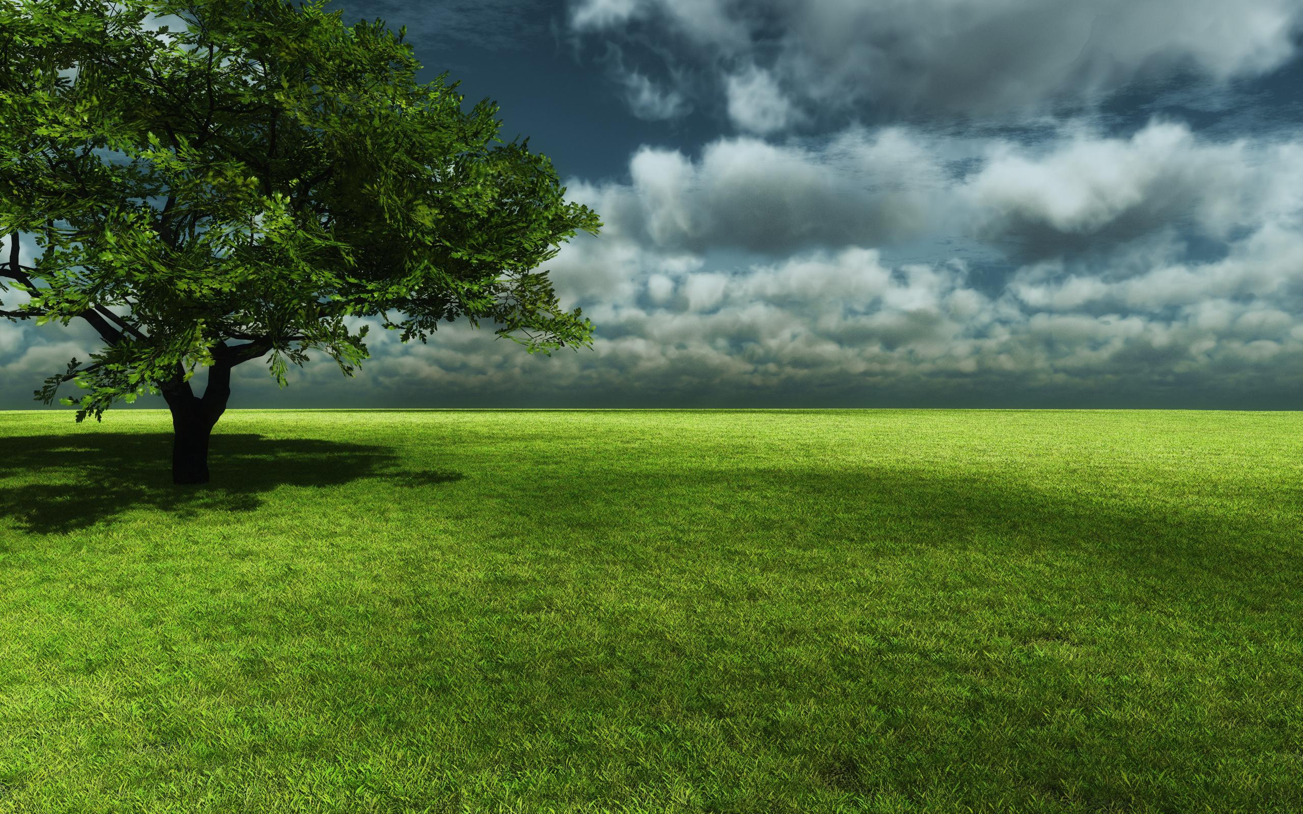 Картинки на рабочий стол зеленая природа