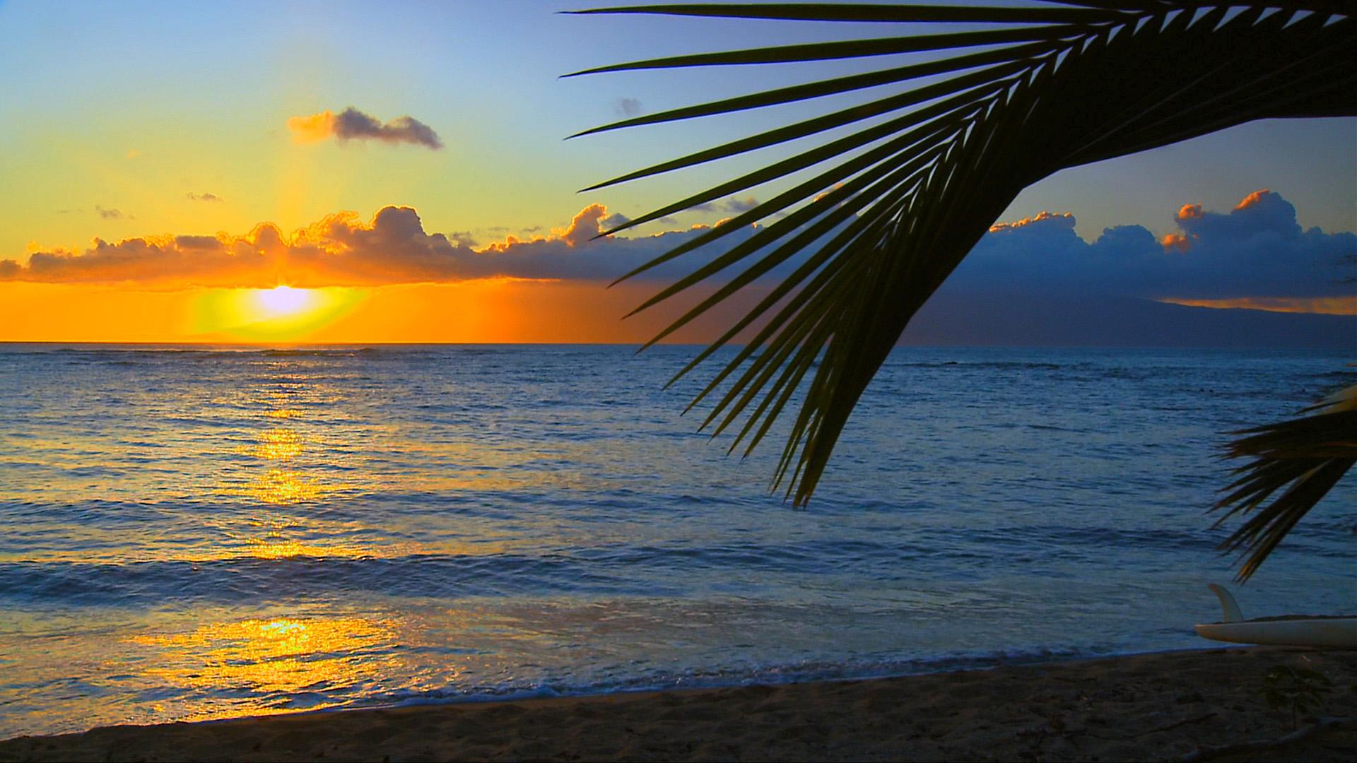 здрасте фотообои для рабочего стола море солнце закат ломает кресты