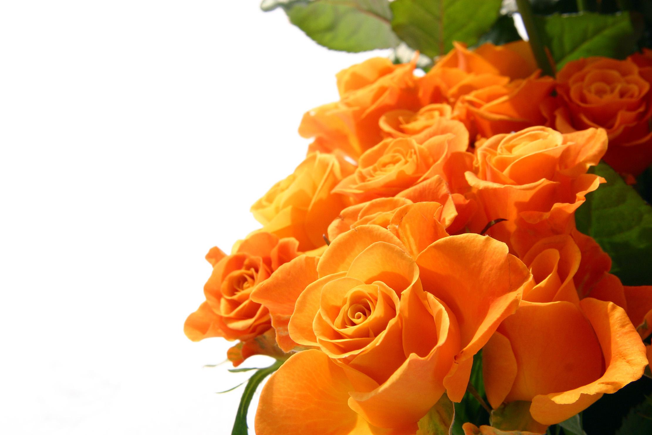 Подвески, открытка на фоне цветов