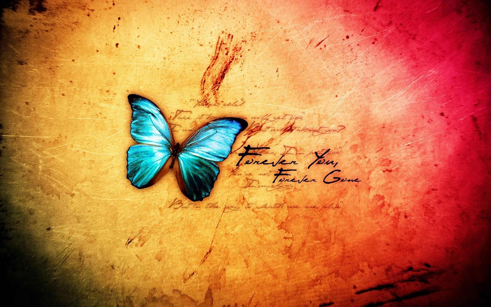 Поздравлениями, бабочки с надписью картинки