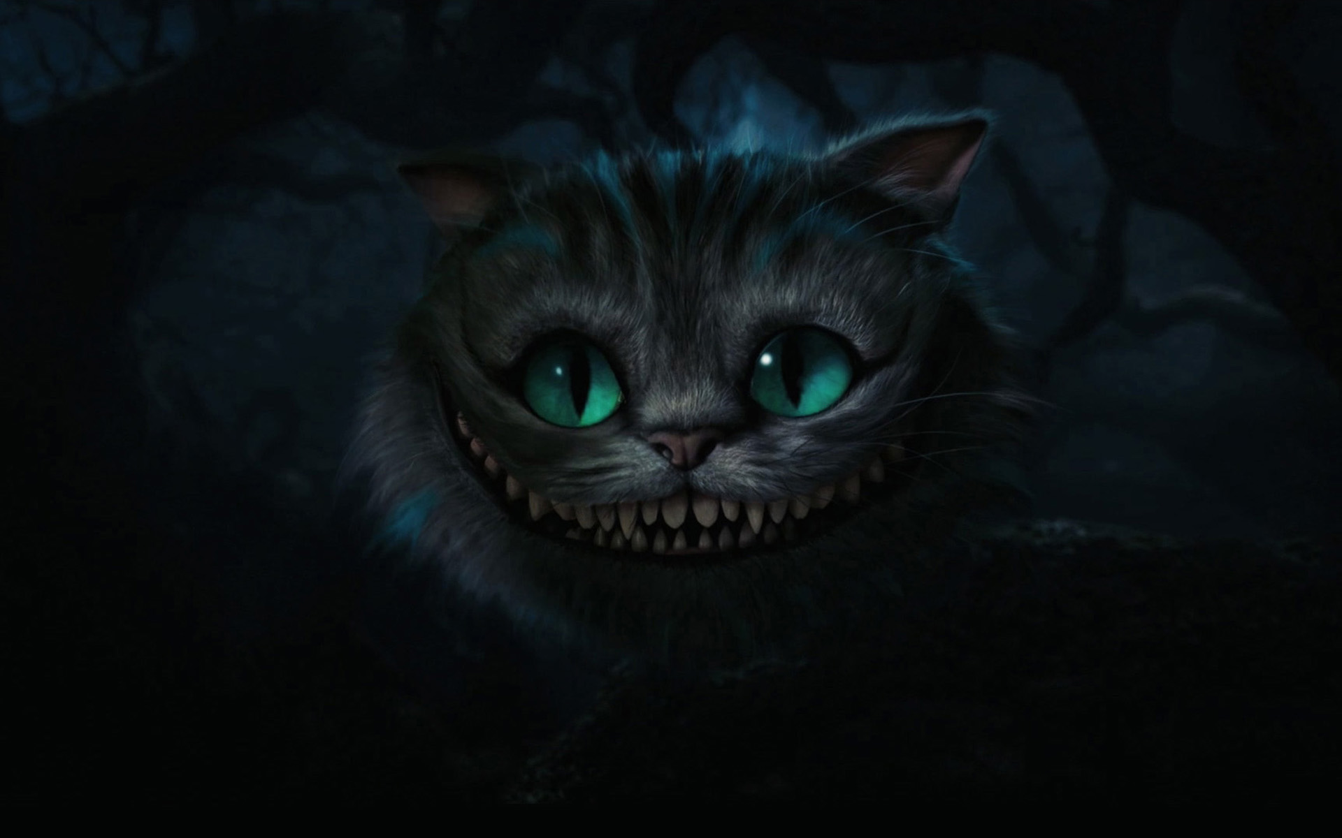 отличие анимация кота из алисы в стране чудес одной стороны