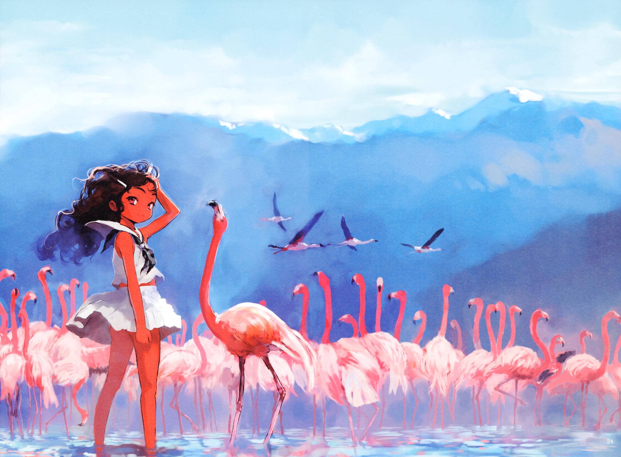 Картинки Фламинго На Рабочий Стол