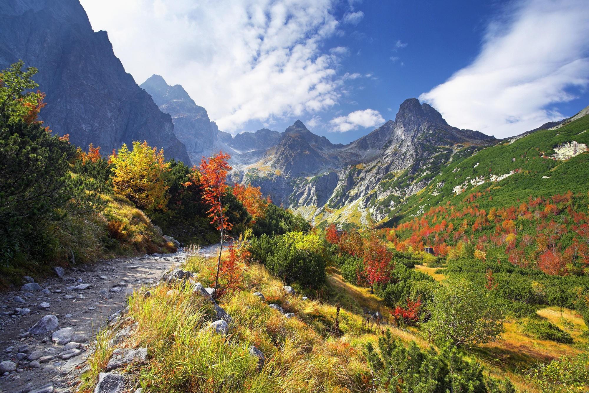 Днем, гифки с осенью в горах